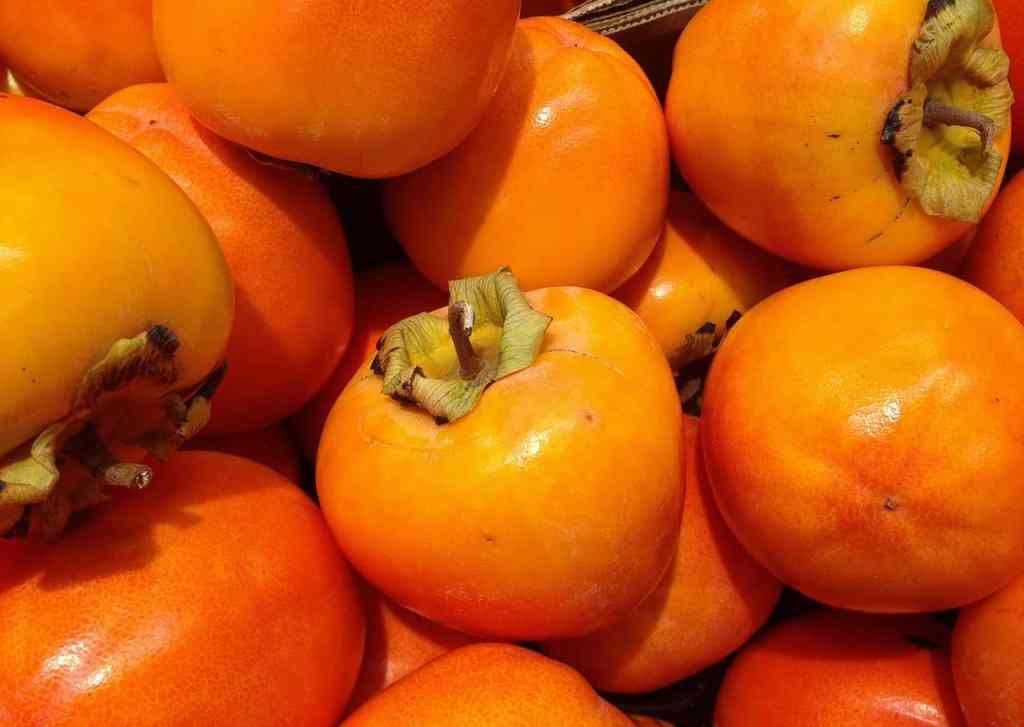 Selecting Persimmons