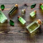 The 7 Best Tea Tree Oils And How They Can Help You