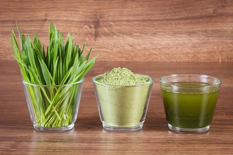 Types of Wheatgrass