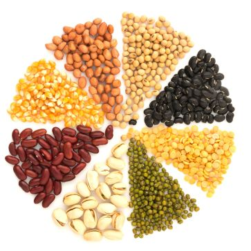 Image result for plant protein