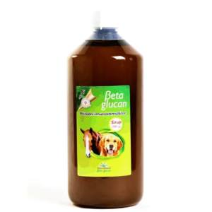 Beta glukán sirup na imunitu 1000ml