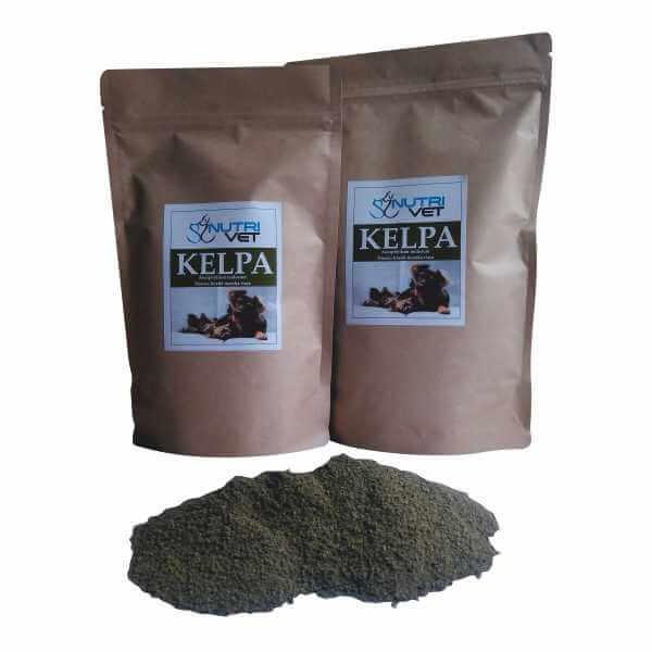 hnedá-morská-riasa-kelpa-1000-g