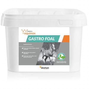 Equinox Gastro foal – 1 kg