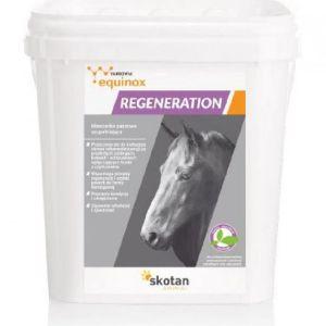 Equinox Regeneration – 3 kg