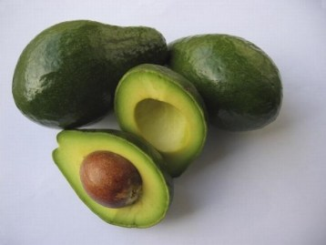 Avocado fortuna