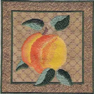 shading and blackwork background in Tink Boord-Dill canvas, stitch guide by needlepoint expert Janet M. Perry
