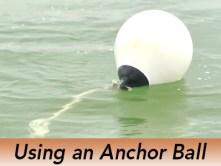 pro-tip-anchor-ball