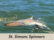 st-simons-spinners-icon