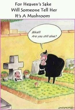 Dog Joke 2