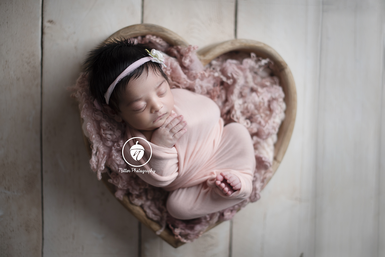 Lowell newborn photographer