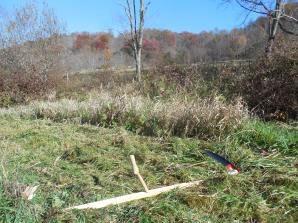 scythe with brush blade on, reading for path clearing