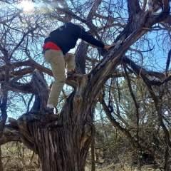 Making the Husband Climb a Tree: Our Jan 8, 2017 Hike