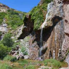 Sitting Bull Falls; An Oasis in the Desert