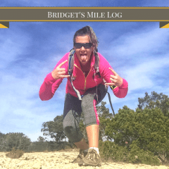Bridget's Mileage Log For #2200Miles4PTSD