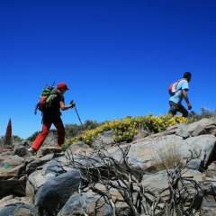 How to Incorporate Your Family on Your Hiking Adventures