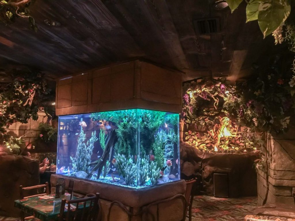 Rainforest Cafe in San Antonio Texas