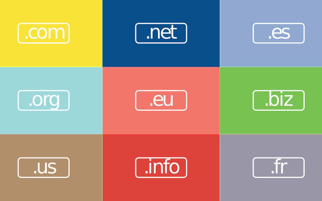 dominio sitio web