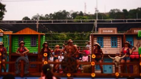 Feria las Flores - Cicek Festivali