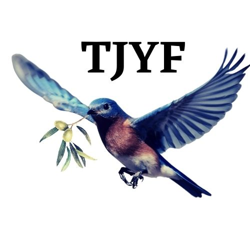 TJY-logo