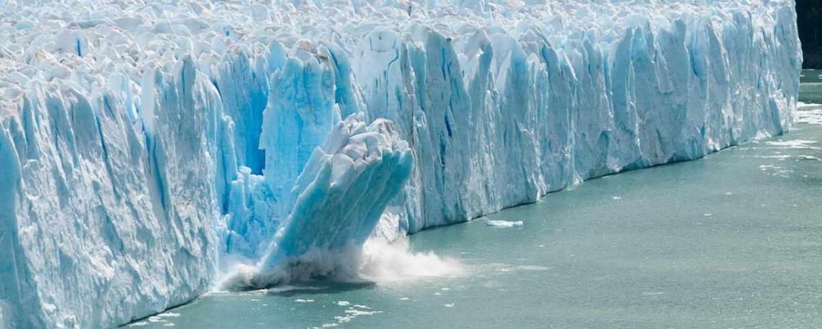 Вследствие глобального потепления в мировом океане замирает жизнь