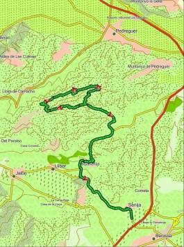 route (Custom)