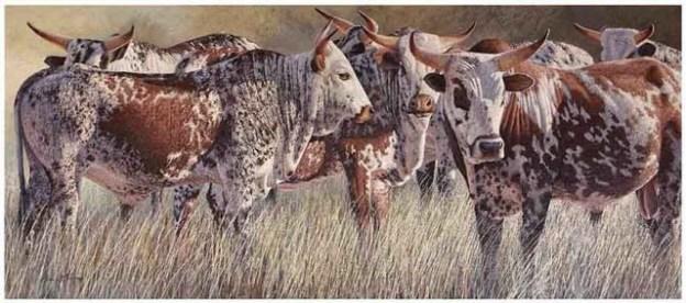 DM_Davids Herd_1