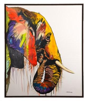 JM_Elephant in frame 2000pix