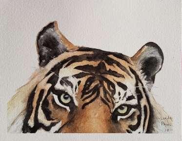 LP_Tiger head