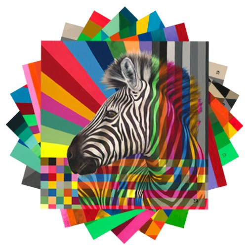 Wildlife In Colour: Leopard, Rhino, Kudu, Zebra, Buffalo, Wild Dog Card Pack & Envelopes