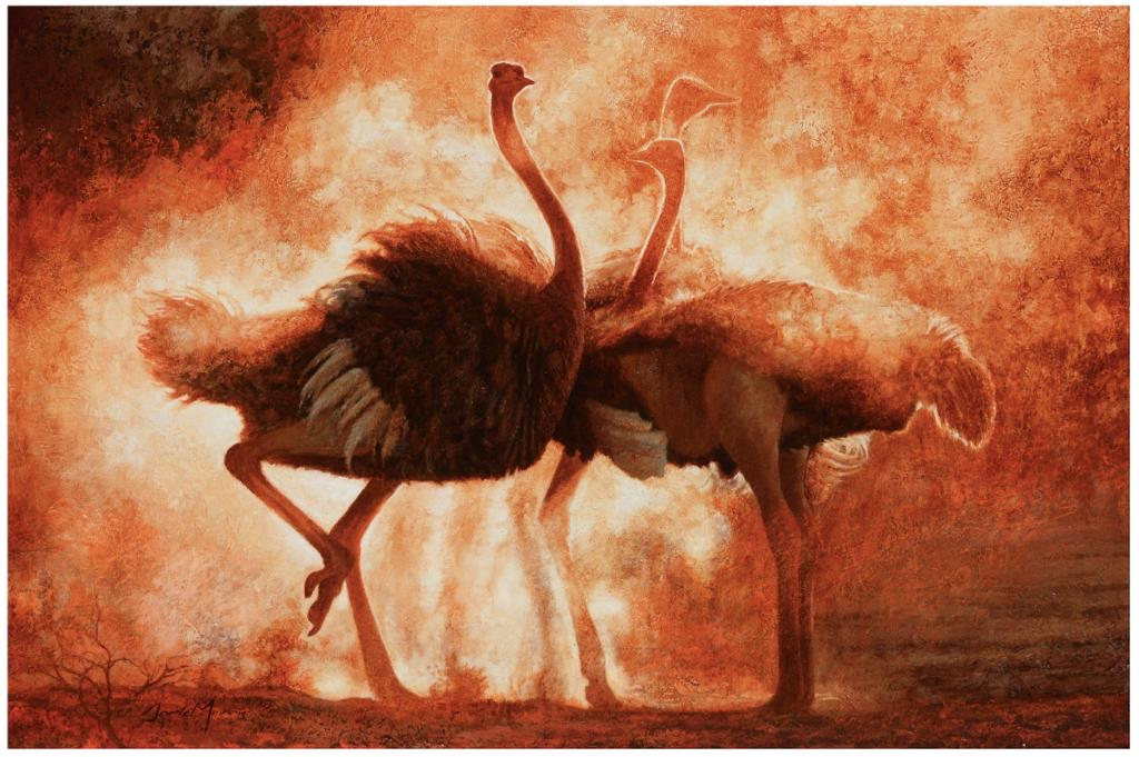Ostriches in dusk light dancing