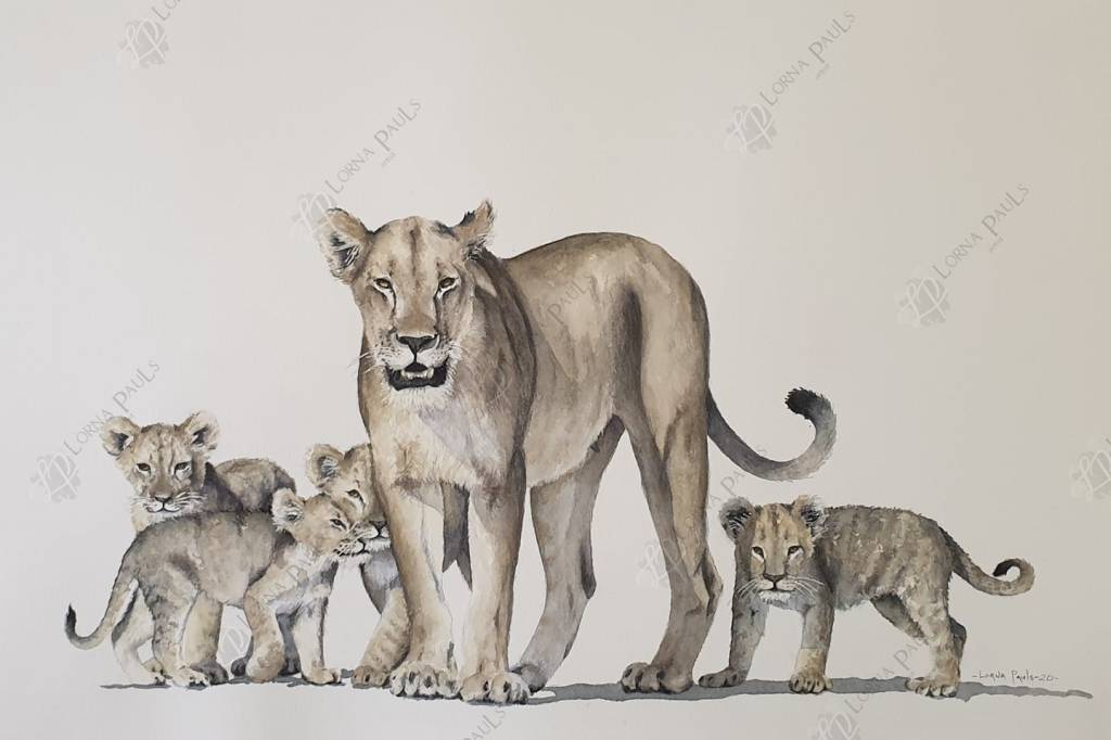 Lioness with cubs aquarel by Lorna Pauls