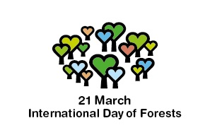 International Day of the Forests Nwabisa BLOG