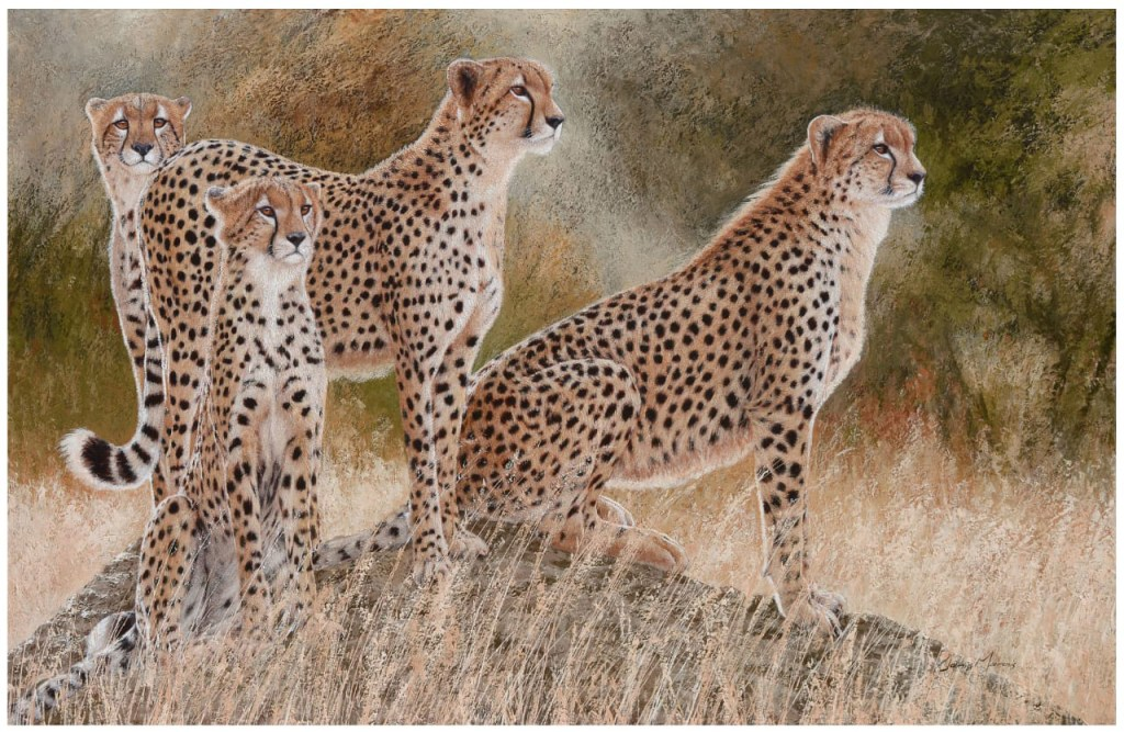 Hunting for hope by Danie Marais