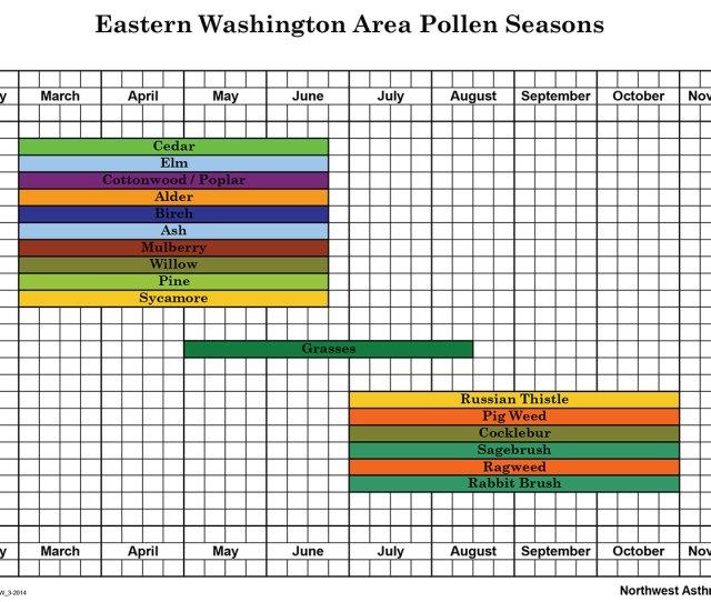 Pollen Seasons Eastern