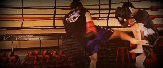 Compete in MMA