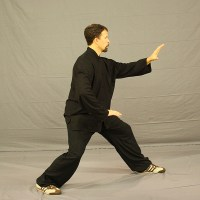 Tai Chi Training in Portland