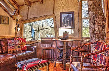 Inside view of treehouse with crooked windows