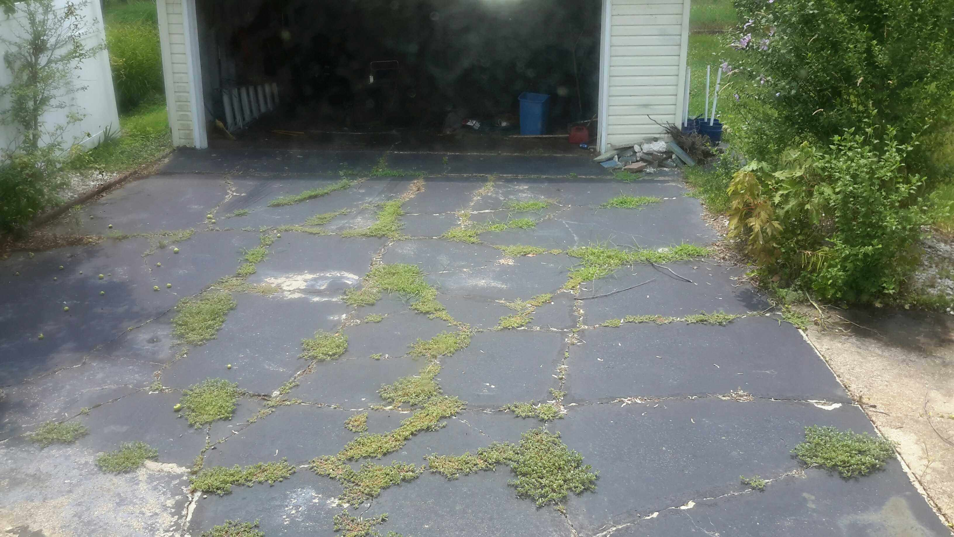 blacktop driveway with grass growing in cracks
