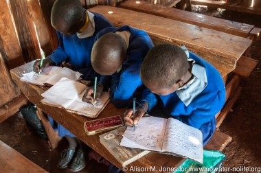 East Africa, Kenya: Mara River Basin, No Water No Life Expedition to the Mau Forest: South Western Mau Catchment, Saino Primary School students in classroom working on assignment linking forests and water supply