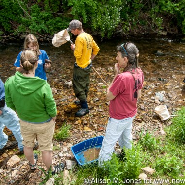 USA: New Jersey, Peapack, Upper Raritan Watershed Association, stream water monitoring training