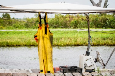 USA:  Louisiana, Venice, Lower Mississippi River Basin, Gulf Coast, Mississippi River Delta, Pointe aux Chenes, shrimp fisherman's overalls hanging to dry