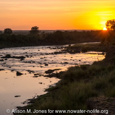 Kenya, Maasai Mara National Reserve, Mara River at sunrise