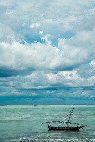 Tanzania: Zanzibar, view of Indian Ocean and local fishing boat from Matemwe Beach