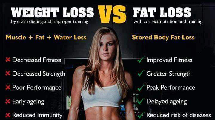 fat versus muscle weight