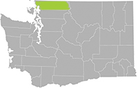 Whatcom County