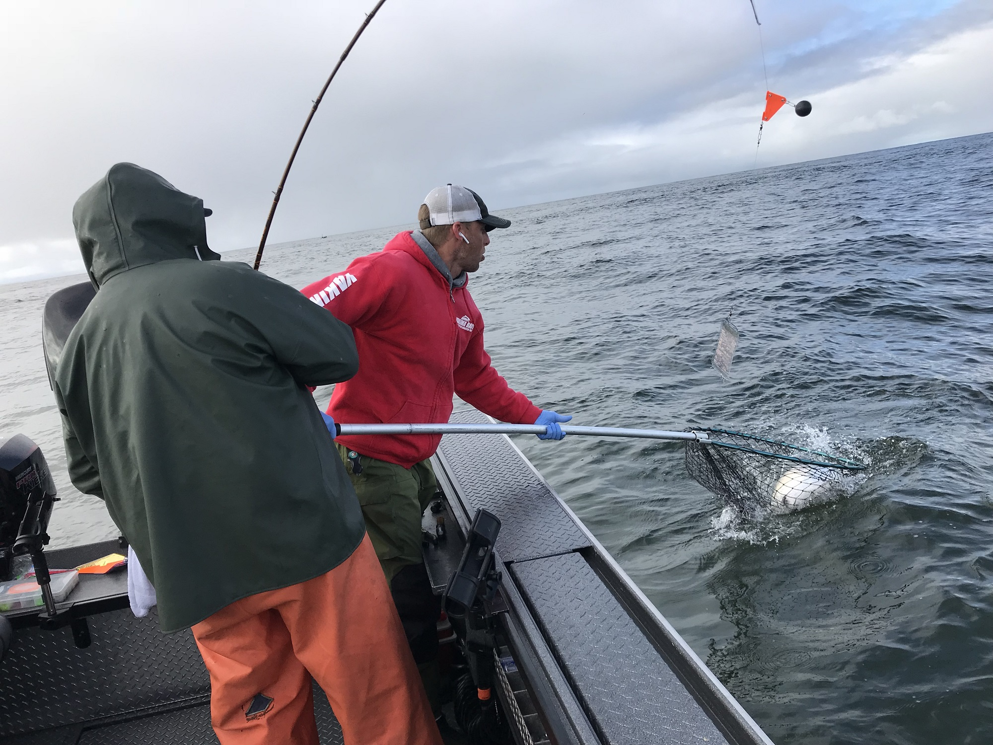 Ilwaco reopening for chinook hatchery coho this sun mon for Wdfw fishing emergency rules