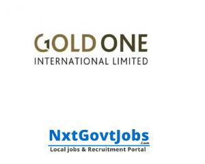 Best Gold One Mine Internship Programme 2021 | Graduate internship