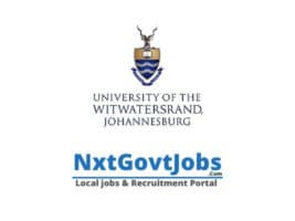 Download Wits University prospectus pdf