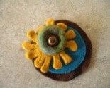 Amoeba brooch