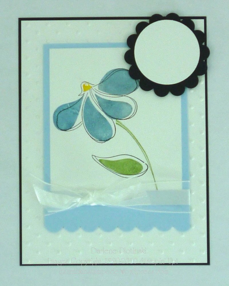 Design A Card-Blue Coneflower